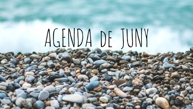 Agenda d'actuacions JUNY 2017