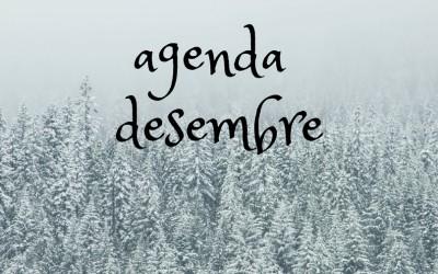 Agenda d'actuacions DESEMBRE 2017